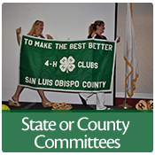 Help shape 4-H in California